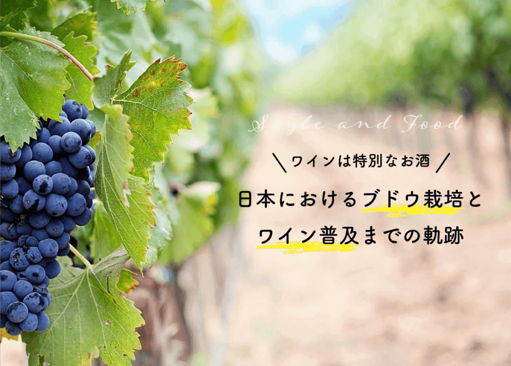 【ワインは特別なお酒】日本におけるブドウ栽培とワイン普及までの軌跡