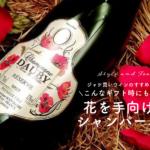 【ジャケ買いワインのすすめvol.5】こんなギフト時にも活躍、花を手向けるシャンパーニュ