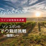 【ワインは特別なお酒】ソンユガンのブドウ栽培挑戦〜畑探し〜