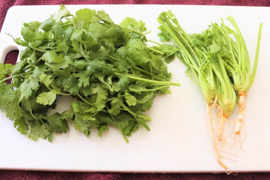 葉と茎に分けられたパクチー