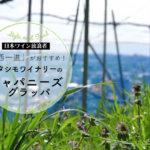 日本ワイン放浪者「西一進」おすすめ!カタシモワイナリーのジャパニーズグラッパ