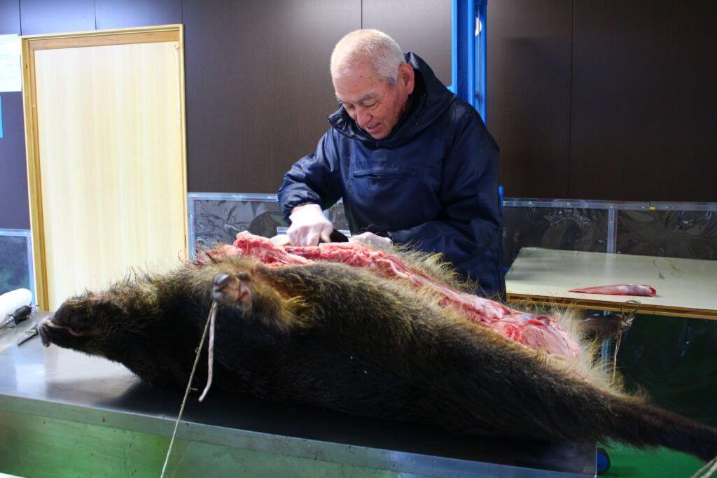 猟師の岡崎太郎さんがイノシシを捌いている様子