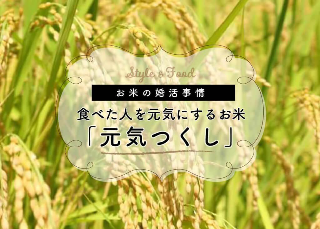 【お米の婚活事情】食べた人を元気にするお米「元気つくし」