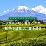 【満木葉子の日本茶完全攻略法vol.15】日本茶お取り寄せのコツ~新茶を通販で、春を満喫~