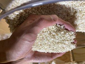 米麹で作られている甘酒は腸内環境の改善に特化