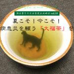 【満木葉子の日本茶完全攻略法vol.18】夏こそ!今こそ!無病息災を願う「大福茶」を!