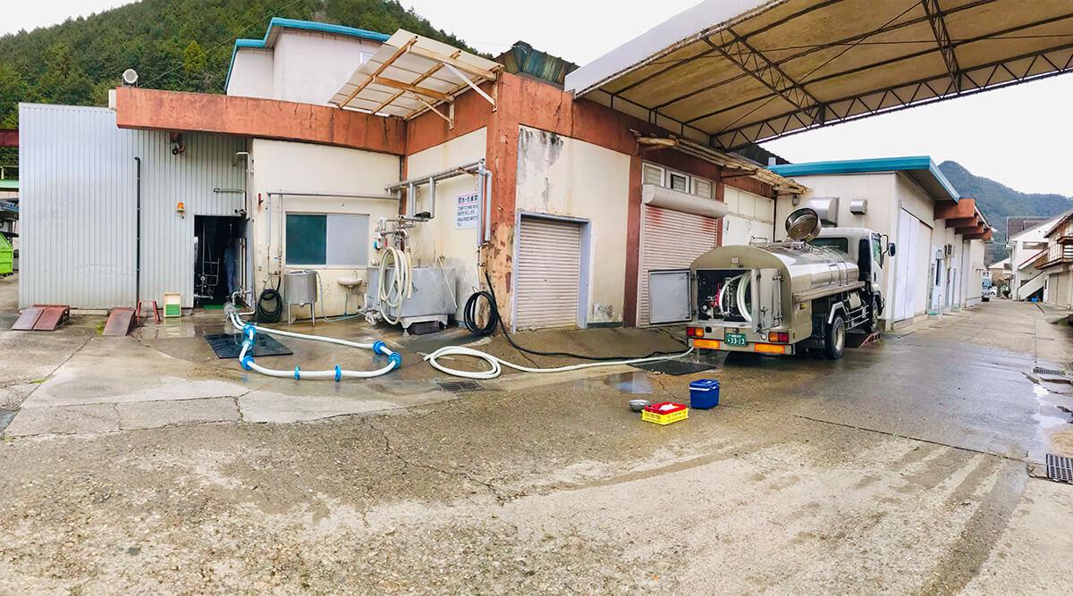 集乳車から工場内のタンクへ直接チューブをつなぎ、なるべく空気に触れないままに生乳を移し変えます。