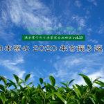 【満木葉子の日本茶完全攻略法vol.23】日本茶の2020年を振り返る
