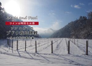 【ワインは特別なお酒】ソンユガンのブドウ栽培挑戦 〜冬の支柱設置作業〜