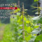 【ワインは特別なお酒】ソンユガンのブドウ栽培挑戦 〜萌芽後のブドウ達〜